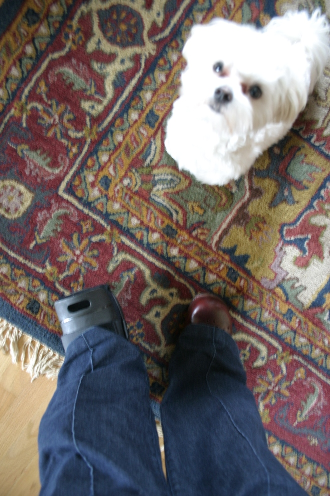 Toby is such a ham...even when I'm trying to take boot pics....